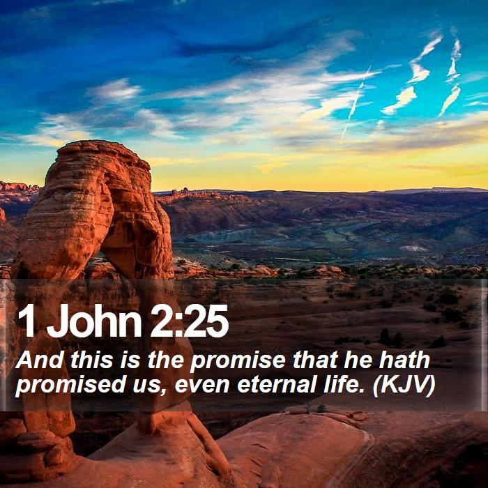 1 John 2:25 - And this is the promise that he hath promised us, even eternal life. (KJV)
