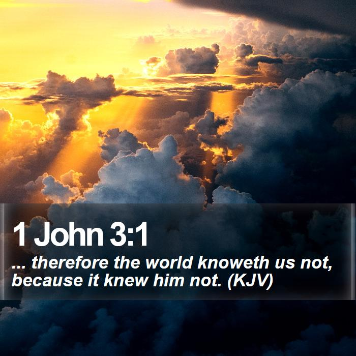 1 John 3:1 - ... therefore the world knoweth us not, because it knew him not. (KJV)