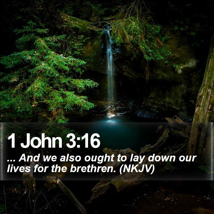 1 John 3:16 - ... And we also ought to lay down our lives for the brethren. (NKJV)