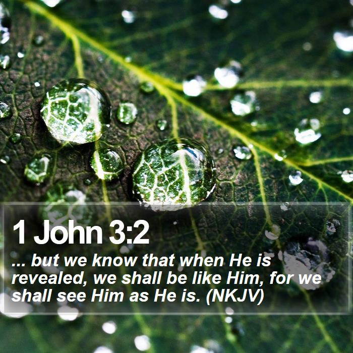 1 John 3:2 - ... but we know that when He is revealed, we shall be like Him, for we shall see Him as He is. (NKJV)