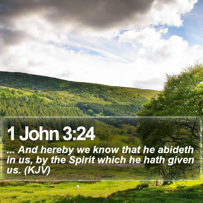 1 John 3:24 - ... And hereby we know that he abideth in us, by the Spirit which he hath given us. (KJV)