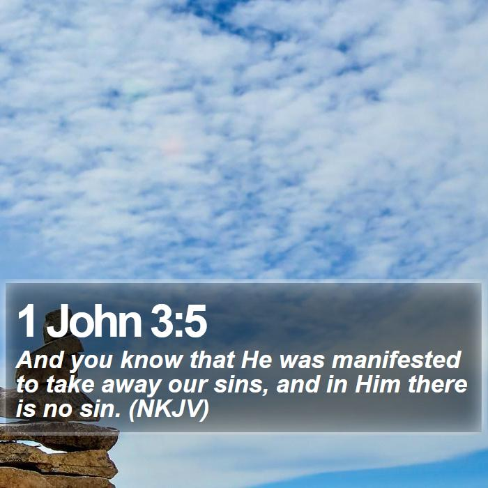 1 John 3:5 - And you know that He was manifested to take away our sins, and in Him there is no sin. (NKJV)