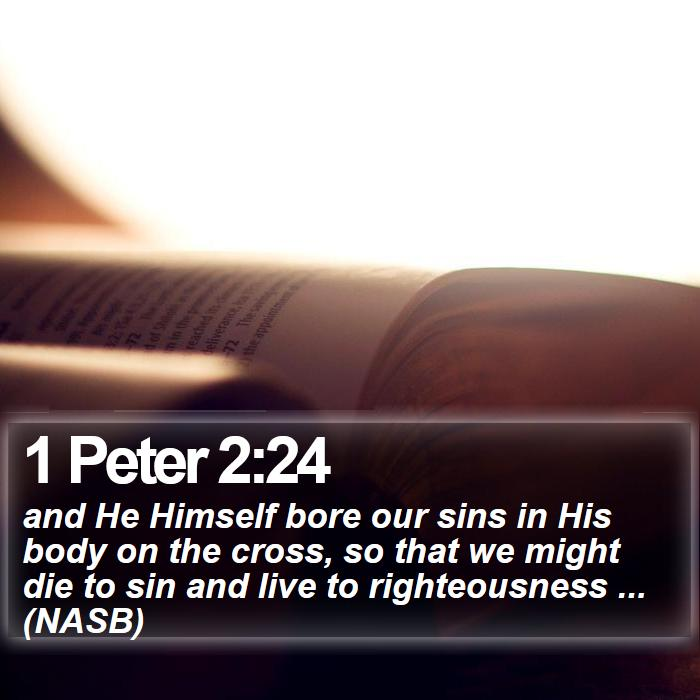 1 Peter 2:24 - and He Himself bore our sins in His body on the cross, so that we might die to sin and live to righteousness ... (NASB)