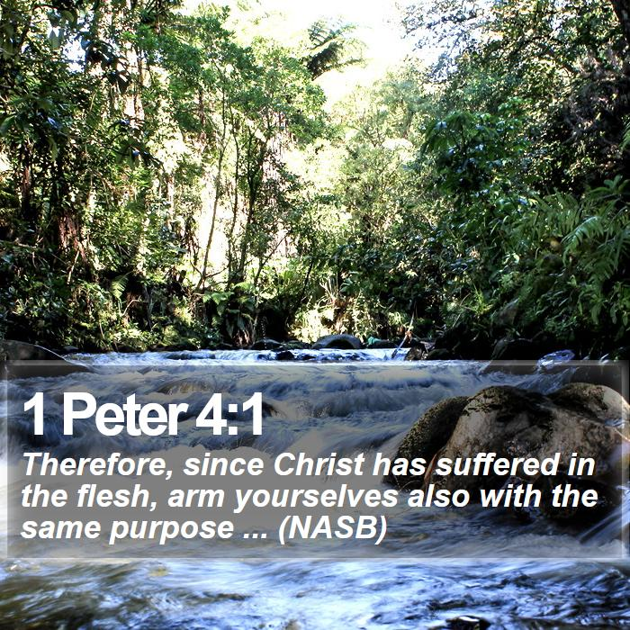 1 Peter 4:1 - Therefore, since Christ has suffered in the flesh, arm yourselves also with the same purpose ... (NASB)
