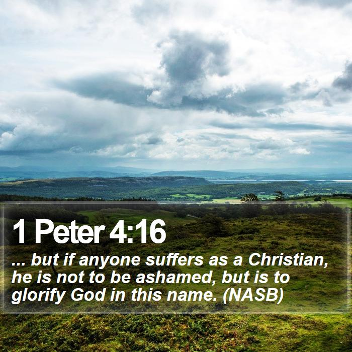 1 Peter 4:16 - ... but if anyone suffers as a Christian, he is not to be ashamed, but is to glorify God in this name. (NASB)