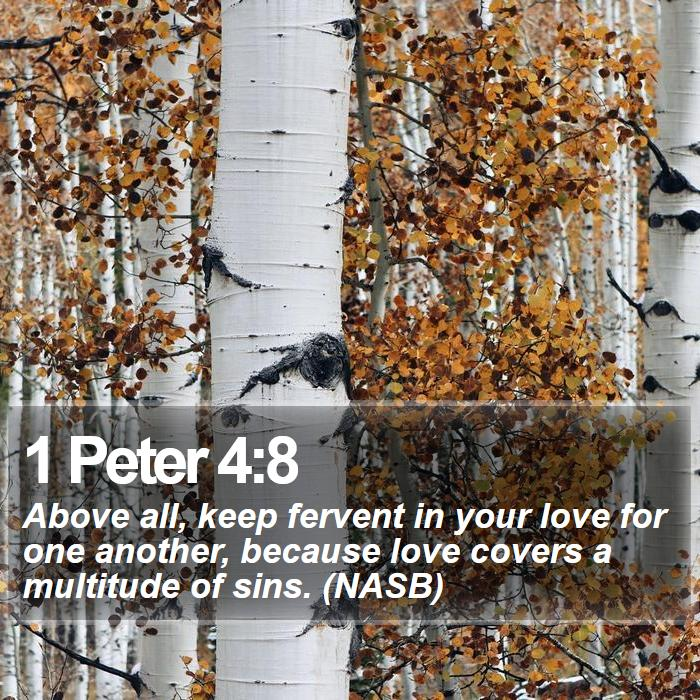 1 Peter 4:8 - Above all, keep fervent in your love for one another, because love covers a multitude of sins. (NASB)