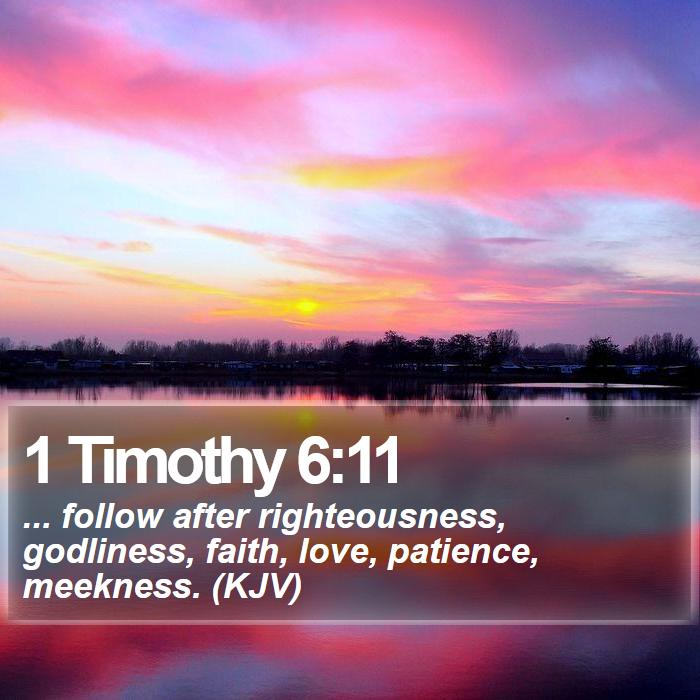 1 Timothy 6:11 -  ... follow after righteousness, godliness, faith, love, patience, meekness. (KJV)