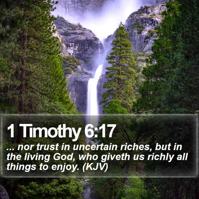 1 Timothy 6:17 -  ... nor trust in uncertain riches, but in the living God, who giveth us richly all things to enjoy. (KJV)