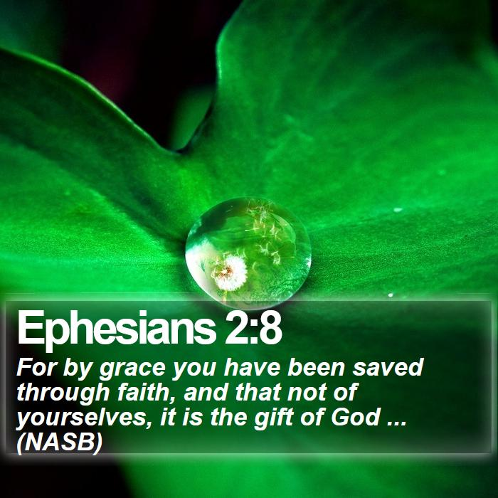 Ephesians 2:8 - For by grace you have been saved through faith, and that not of yourselves, it is the gift of God ... (NASB)