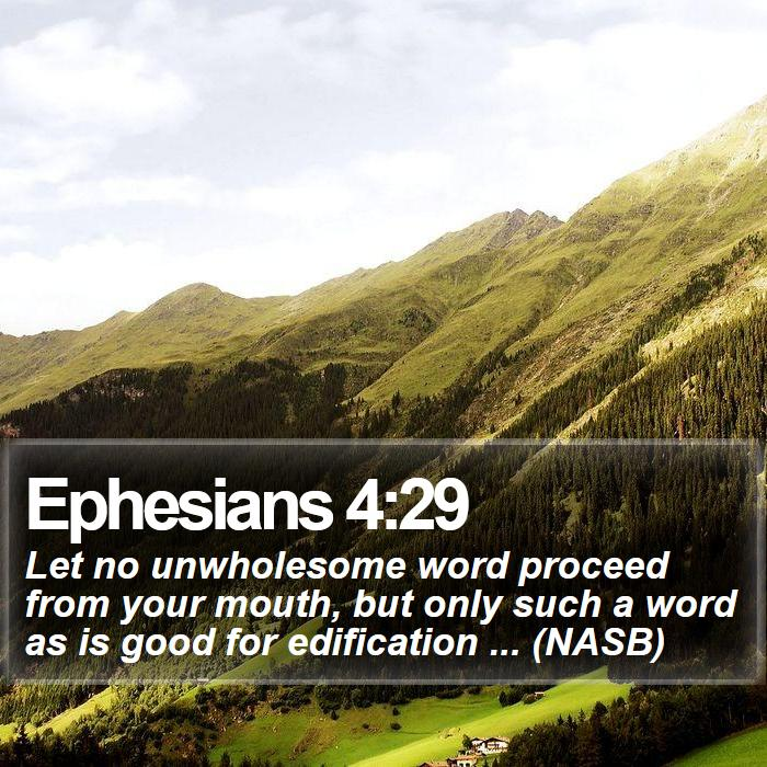 Ephesians 4:29 - Let no unwholesome word proceed from your mouth, but only such a word as is good for edification ... (NASB)