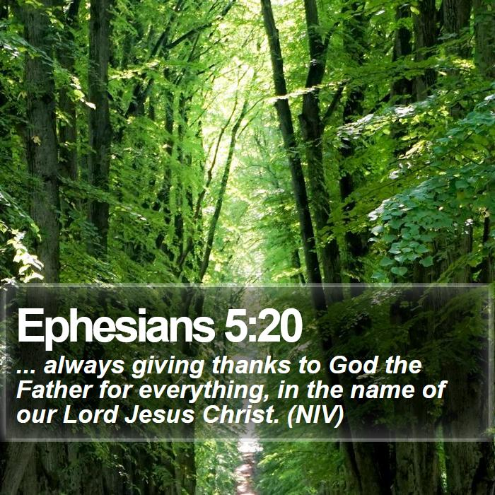 Ephesians 5:20 - ... always giving thanks to God the Father for everything, in the name of our Lord Jesus Christ. (NIV)