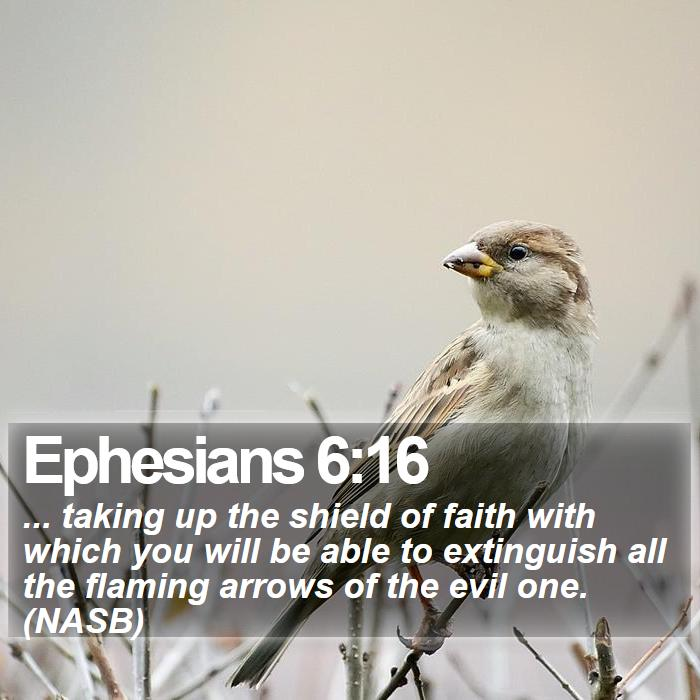 Ephesians 6:16 - ... taking up the shield of faith with which you will be able to extinguish all the flaming arrows of the evil one. (NASB)