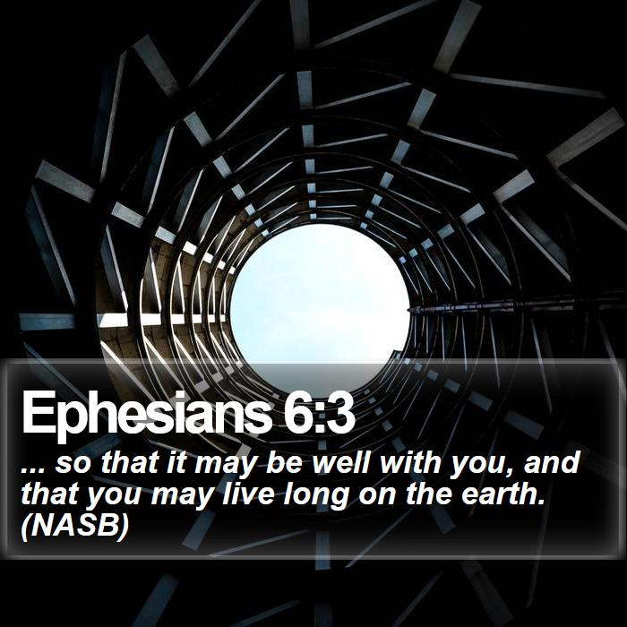 Ephesians 6:3 - ... so that it may be well with you, and that you may live long on the earth. (NASB)