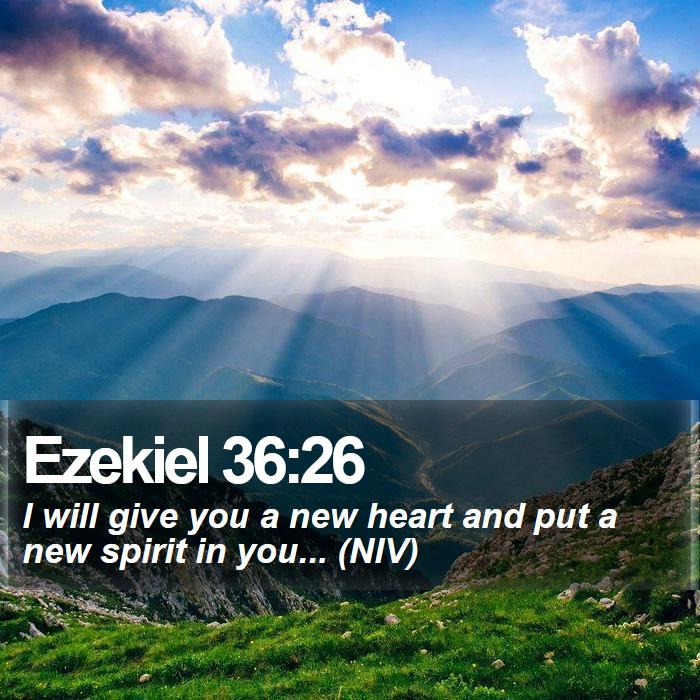 Ezekiel 36:26 - I will give you a new heart and put a new spirit in you... (NIV)