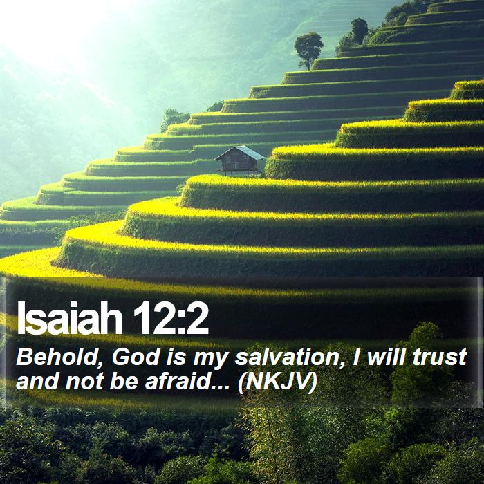 Isaiah 12:2 - Behold, God is my salvation, I will trust and not be afraid... (NKJV)