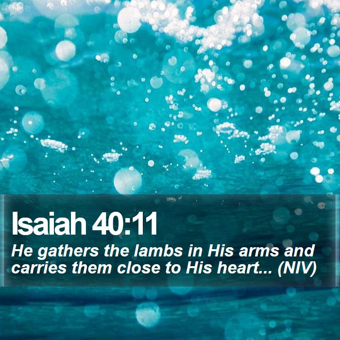 Isaiah 40:11 - He gathers the lambs in His arms and carries them close to His heart... (NIV)