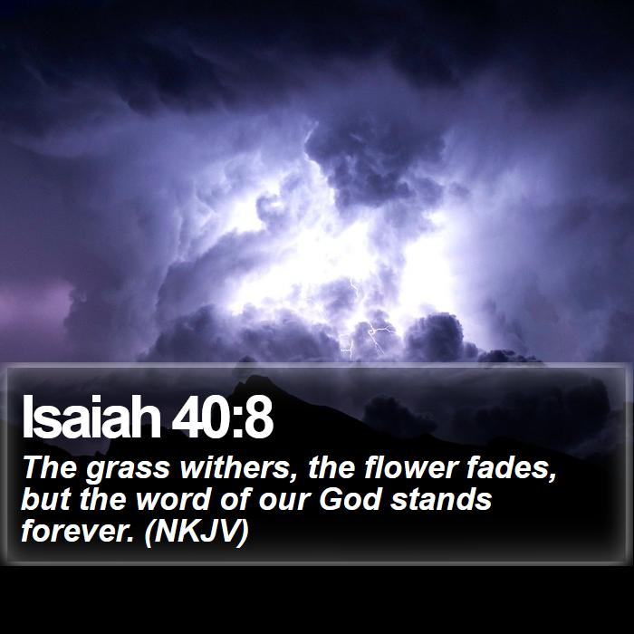 Isaiah 40:8 - The grass withers, the flower fades, but the word of our God stands forever. (NKJV)