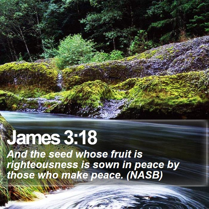 James 3:18 - And the seed whose fruit is righteousness is sown in peace by those who make peace. (NASB)