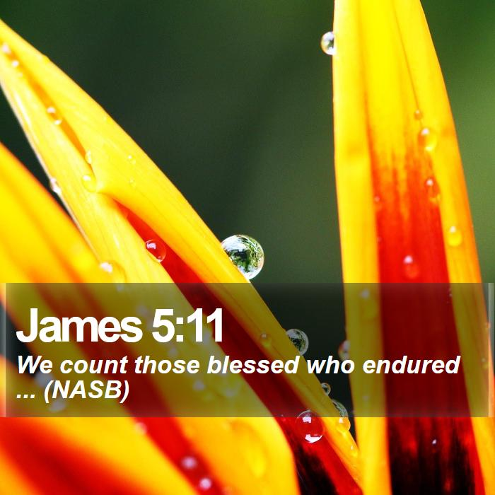 James 5:11 - We count those blessed who endured ... (NASB)