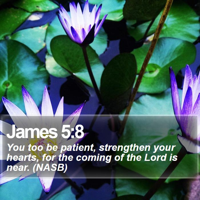 James 5:8 - You too be patient, strengthen your hearts, for the coming of the Lord is near. (NASB)