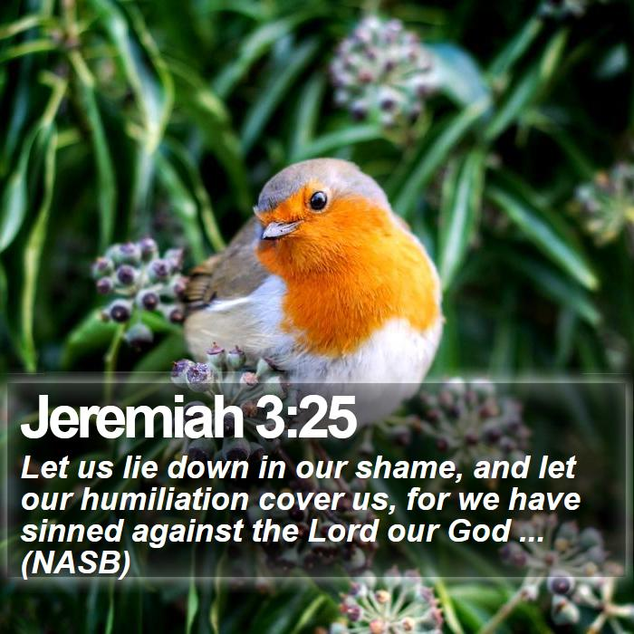 Jeremiah 3:25 - Let us lie down in our shame, and let our humiliation cover us, for we have sinned against the Lord our God ... (NASB)
