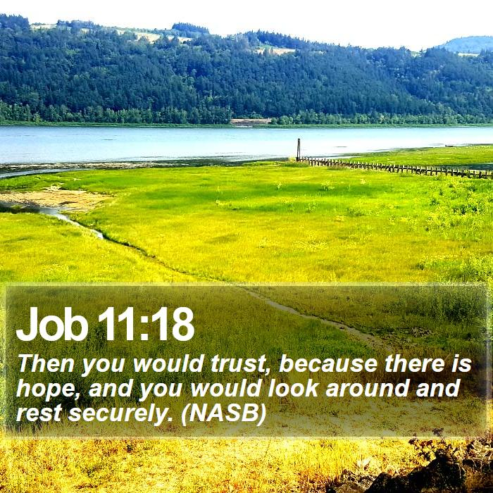 Job 11:18 - Then you would trust, because there is hope, and you would look around and rest securely. (NASB)