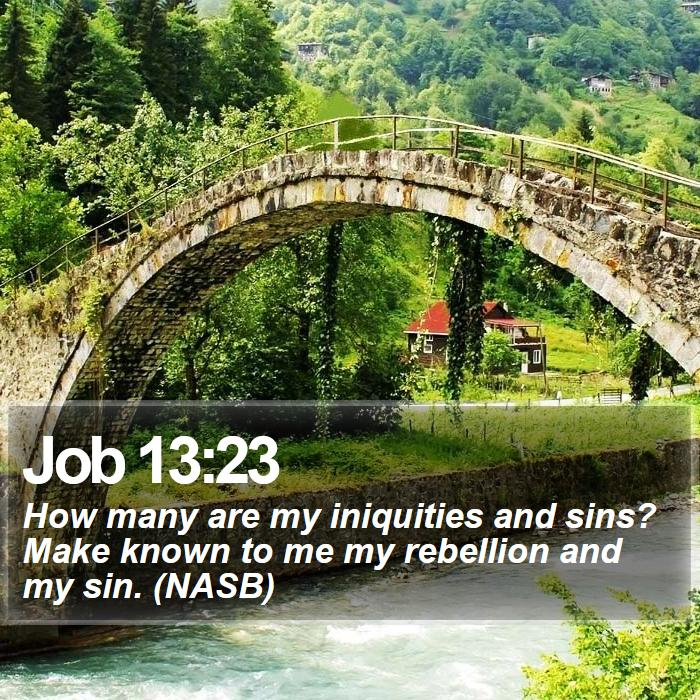Job 13:23 - How many are my iniquities and sins? Make known to me my rebellion and my sin. (NASB)