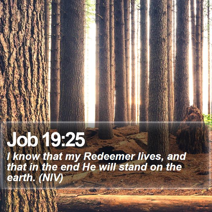 Job 19:25 - I know that my Redeemer lives, and that in the end He will stand on the earth. (NIV)
