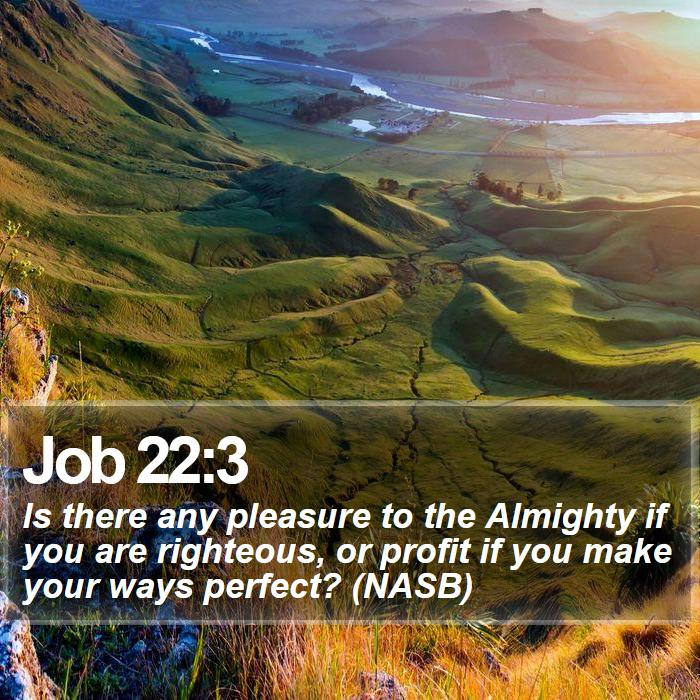 Job 22:3 - Is there any pleasure to the Almighty if you are righteous, or profit if you make your ways perfect? (NASB)