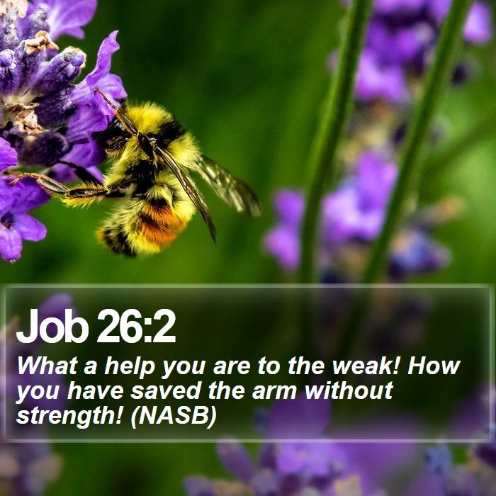 Job 26:2 - What a help you are to the weak! How you have saved the arm without strength! (NASB)