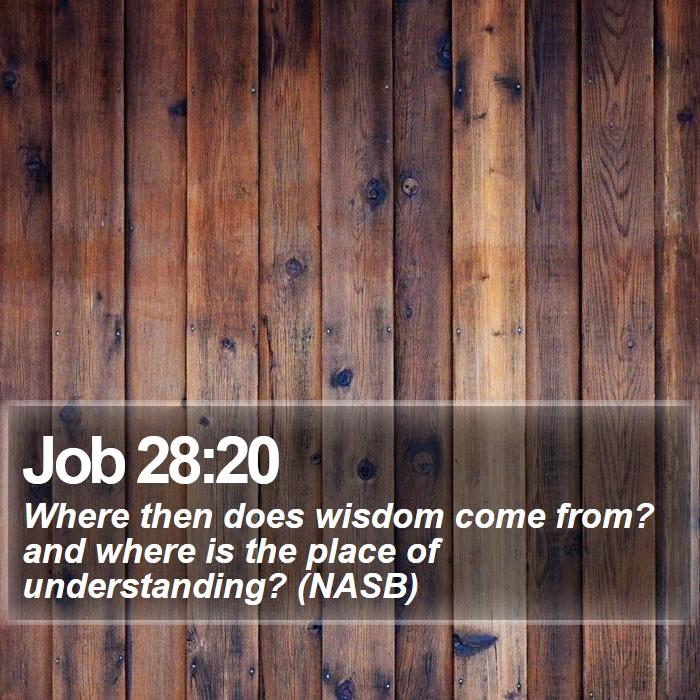Job 28:20 - Where then does wisdom come from? and where is the place of understanding? (NASB)