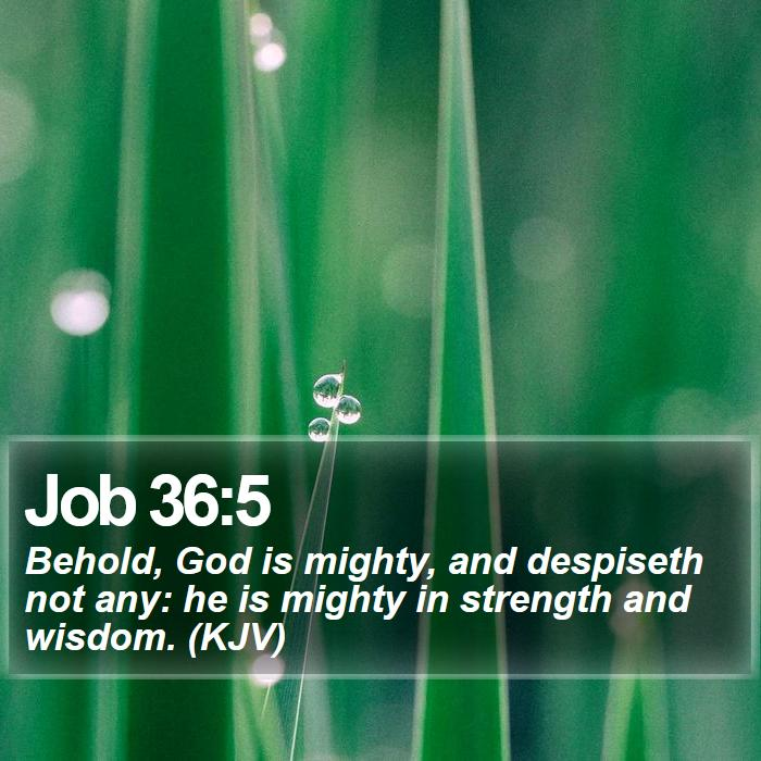 Job 36:5 - Behold, God is mighty, and despiseth not any: he is mighty in strength and wisdom. (KJV)