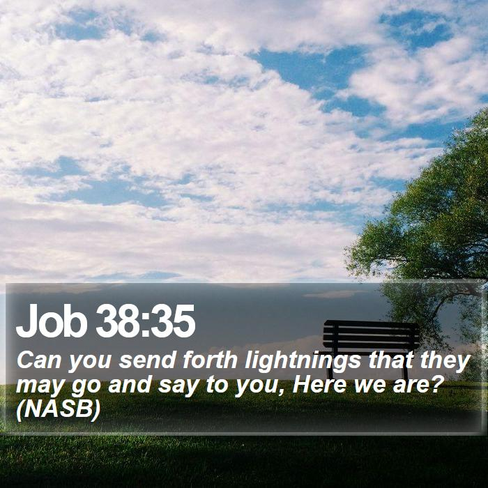 Job 38:35 - Can you send forth lightnings that they may go and say to you, Here we are? (NASB)