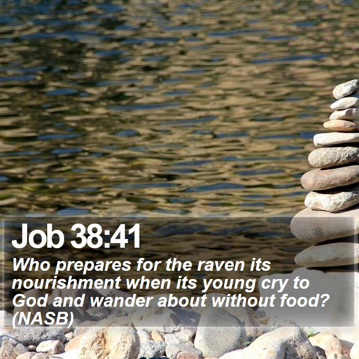 Job 38:41 - Who prepares for the raven its nourishment when its young cry to God and wander about without food? (NASB)