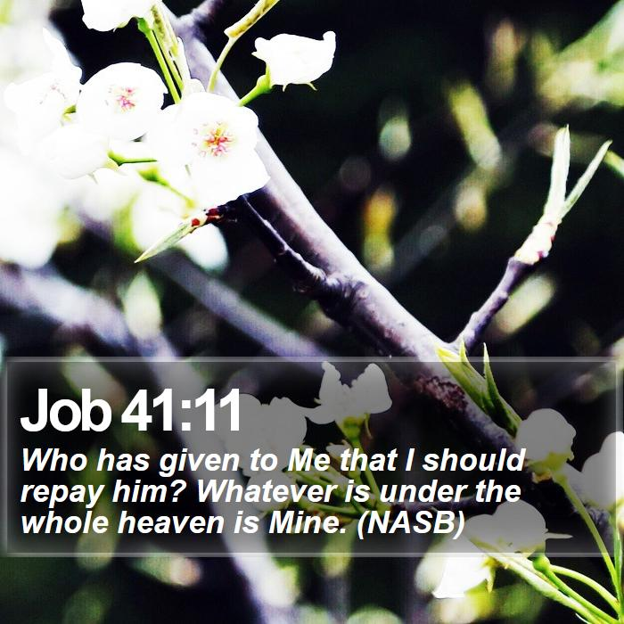 Job 41:11 - Who has given to Me that I should repay him? Whatever is under the whole heaven is Mine. (NASB)