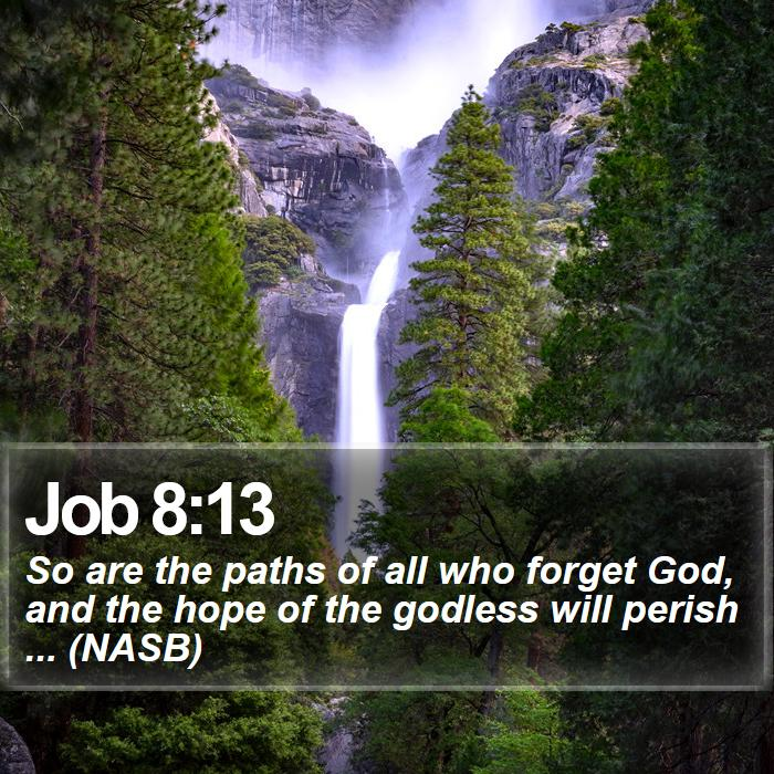 Job 8:13 - So are the paths of all who forget God, and the hope of the godless will perish ... (NASB)