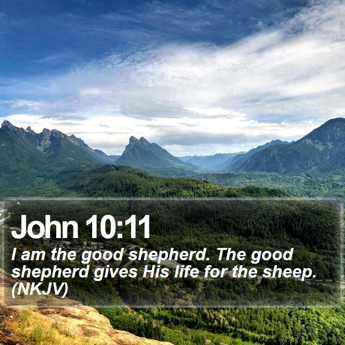 John 10:11 - I am the good shepherd. The good shepherd gives His life for the sheep. (NKJV)