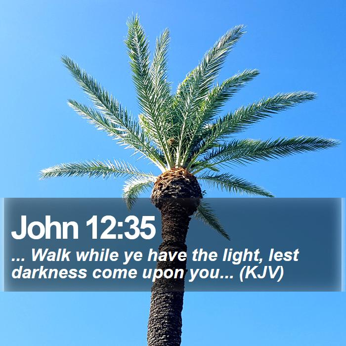 John 12:35 - ... Walk while ye have the light, lest darkness come upon you... (KJV)