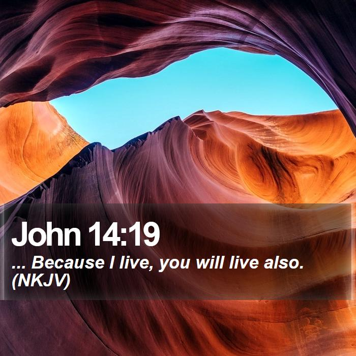 John 14:19 - ... Because I live, you will live also. (NKJV)