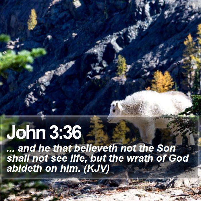 John 3:36 - ... and he that believeth not the Son shall not see life, but the wrath of God abideth on him. (KJV)