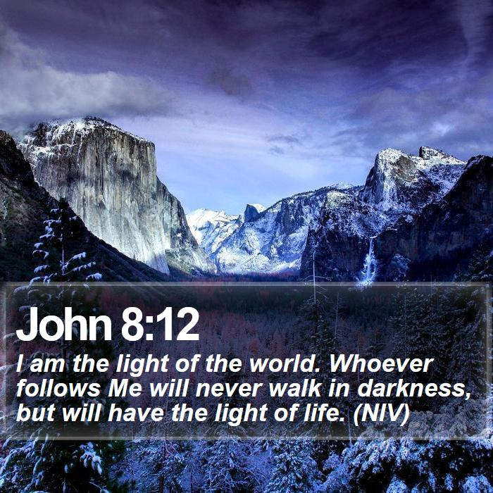 John 8:12 - I am the light of the world. Whoever follows Me will never walk in darkness, but will have the light of life. (NIV)