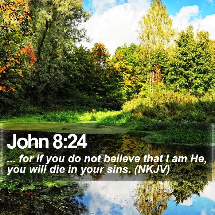 John 8:24 - ... for if you do not believe that I am He, you will die in your sins. (NKJV)