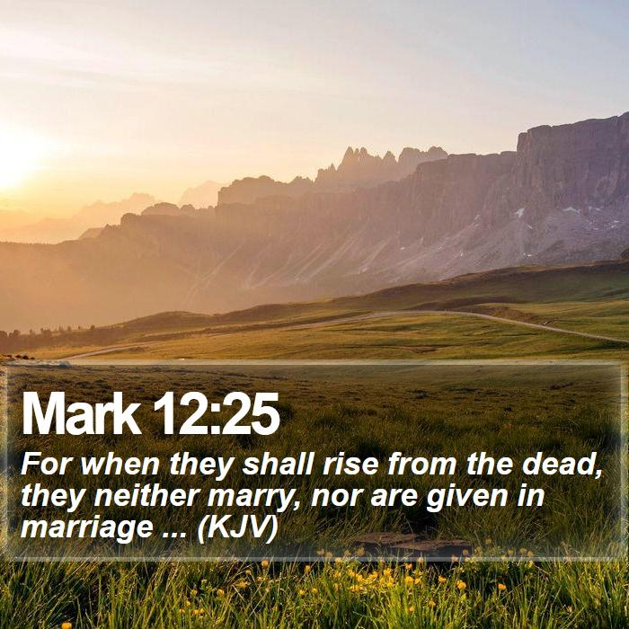 Mark 12:25 - For when they shall rise from the dead, they neither marry, nor are given in marriage ... (KJV)