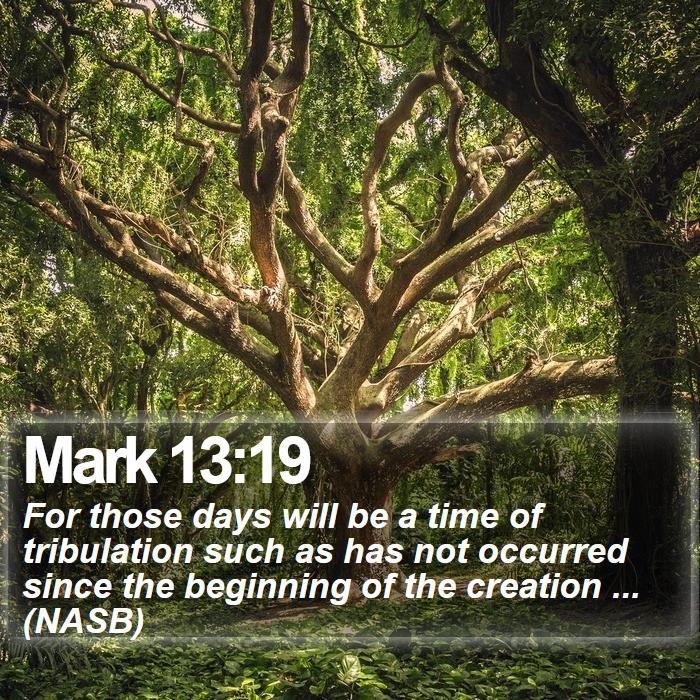 Mark 13:19 - For those days will be a time of tribulation such as has not occurred since the beginning of the creation ... (NASB)