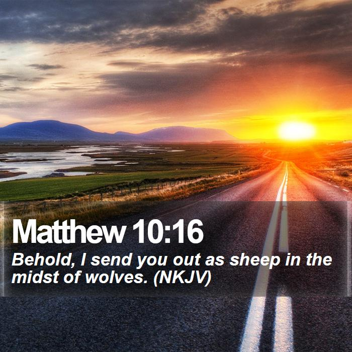 Matthew 10:16 - Behold, I send you out as sheep in the midst of wolves. (NKJV)