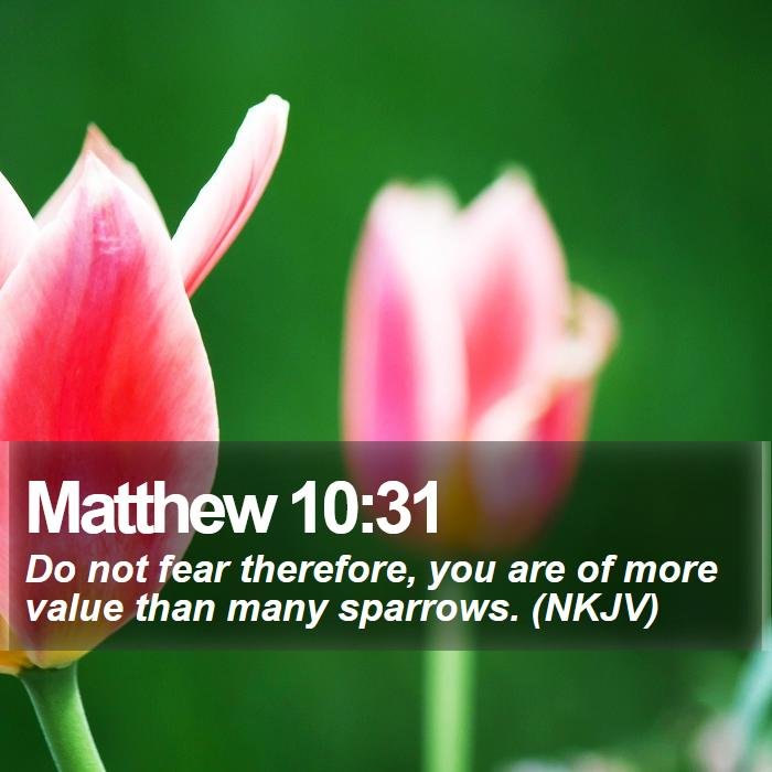 Matthew 10:31 - Do not fear therefore, you are of more value than many sparrows. (NKJV)