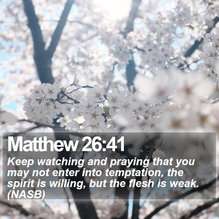 Matthew 26:41 - Keep watching and praying that you may not enter into temptation, the spirit is willing, but the flesh is weak. (NASB)
