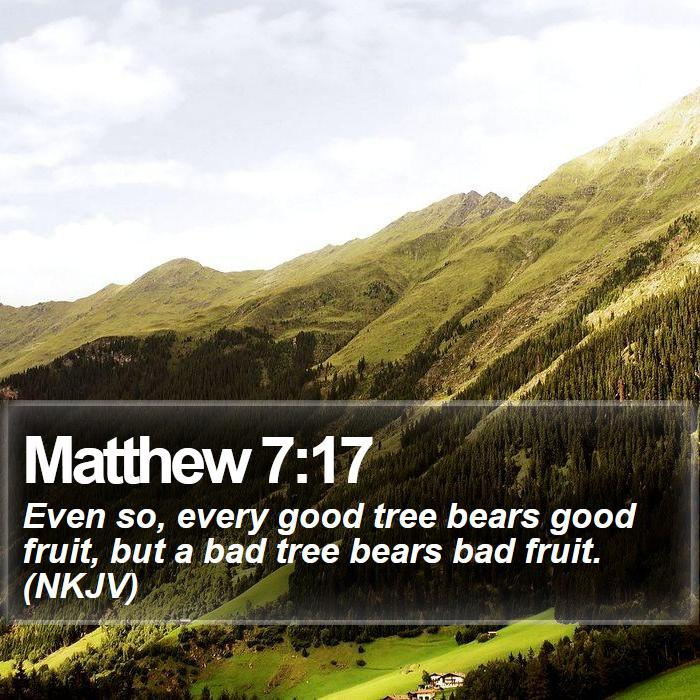 Matthew 7:17 - Even so, every good tree bears good fruit, but a bad tree bears bad fruit. (NKJV)