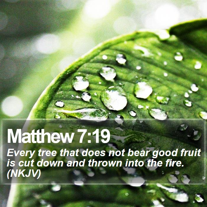 Matthew 7:19 - Every tree that does not bear good fruit is cut down and thrown into the fire. (NKJV)