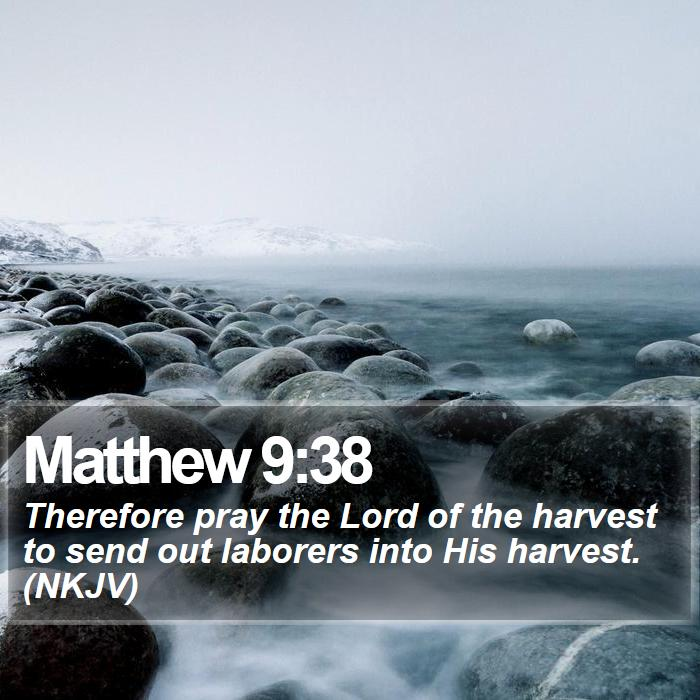 Matthew 9:38 - Therefore pray the Lord of the harvest to send out laborers into His harvest. (NKJV)